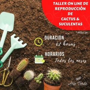 Taller Online Reproducción de Cactus y Suculentas
